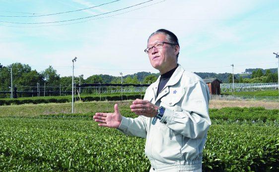 福岡県農林業総合試験場 八女分場